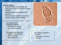 Клінічні форми: Безсимптомне амебоносійство (просвітний амебіаз,безсимптомний...