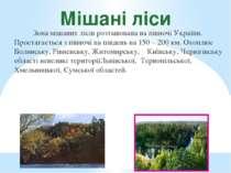 Мішані ліси Зона мішаних лісів розташована на півночі України. Простягається ...
