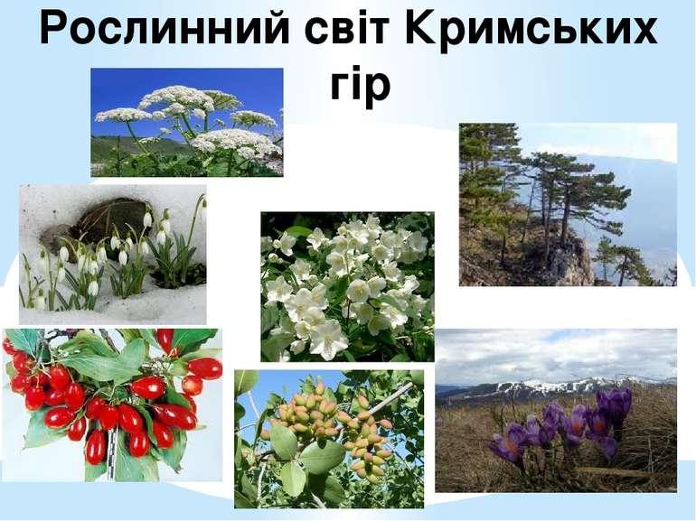 Рослинний світ Кримських гір
