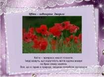Квіти – невичерпне джерело натхнення… Квіти – невичерпне джерело натхнення… К...