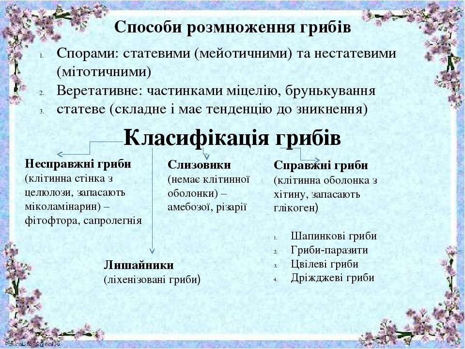 Способи розмноження грибів Спорами: статевими (мейотичними) та нестатевими (м...