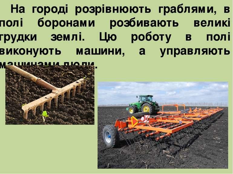 На городі розрівнюють граблями, в полі боронами розбивають великі грудки земл...