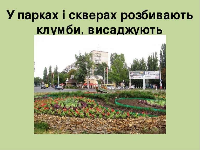 У парках і скверах розбивають клумби, висаджують декоративні квіти.