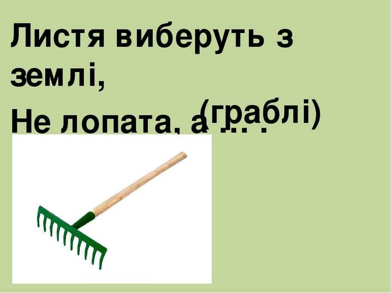 Листя виберуть з землі, Не лопата, а … . (граблі)