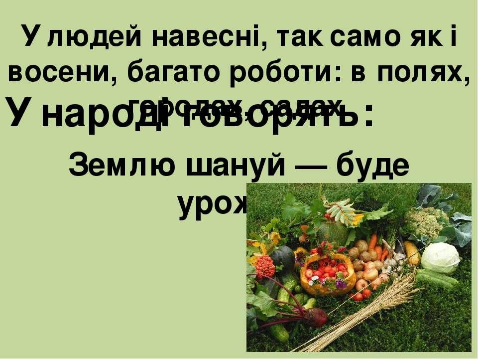 У людей навесні, так само як і восени, багато роботи: в полях, городах, садах...