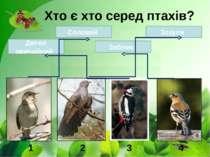 Хто є хто серед птахів? 1 2 3 4 Соловей Дятел звичайний Зяблик Зозуля