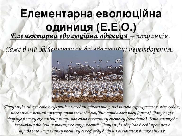 Елементарна еволюційна одиниця (Е.Е.О.) Елементарна еволюційна одиниця – попу...