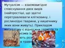 Мутуалізм — взаємовигідне співіснування двох видів (найпростіші, що здатні пе...