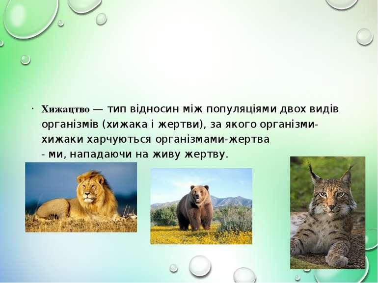 Хижацтво — тип відносин між популяціями двох видів організмів (хижака і жертв...