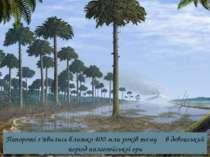 Папороті з'явились близько 400 млн років тому в девонський період палеозойськ...