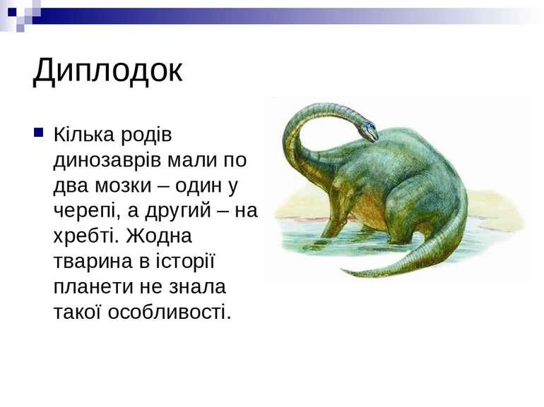 Диплодок Кілька родів динозаврів мали по два мозки – один у черепі, а другий ...