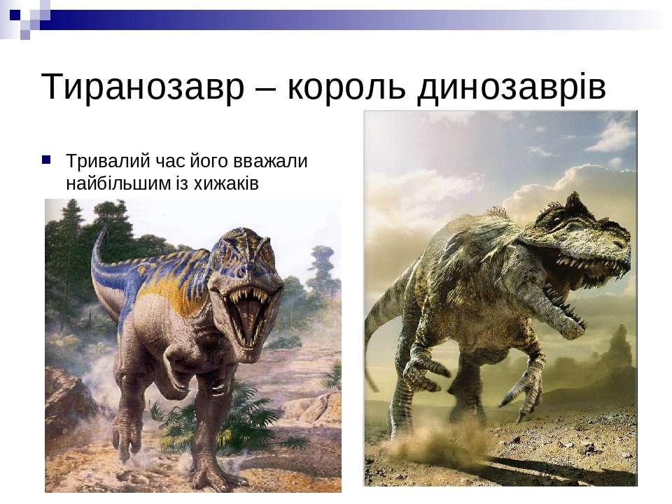 Тиранозавр – король динозаврів Тривалий час його вважали найбільшим із хижакі...