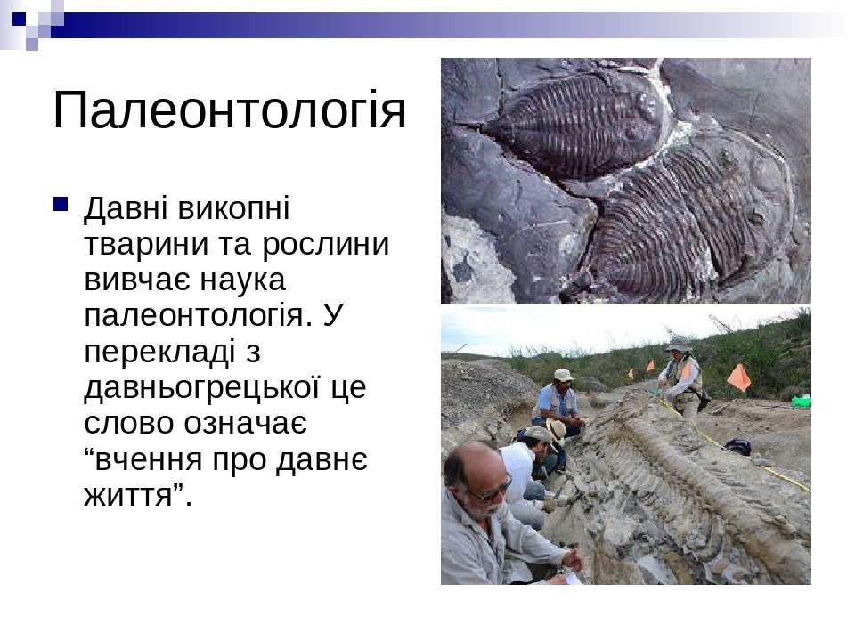 Палеонтологія Давні викопні тварини та рослини вивчає наука палеонтологія. У ...