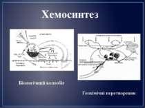 Біологічний колообіг Геохімічні перетворення Хемосинтез