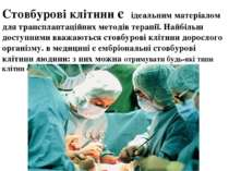 Стовбурові клітини є ідеальним матеріалом для трансплантаційних методів терап...