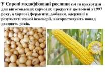 У Європі модифіковані рослини сої та кукурудзи для виготовлення харчових прод...