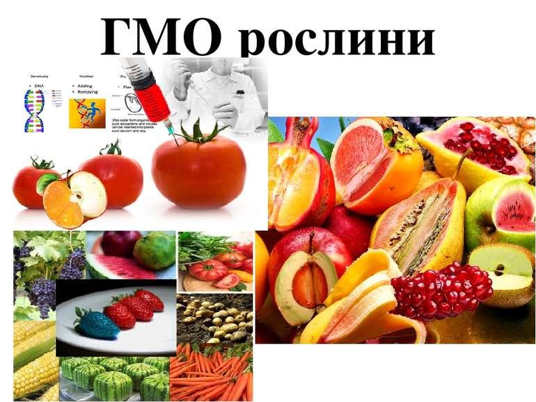 ГМО рослини