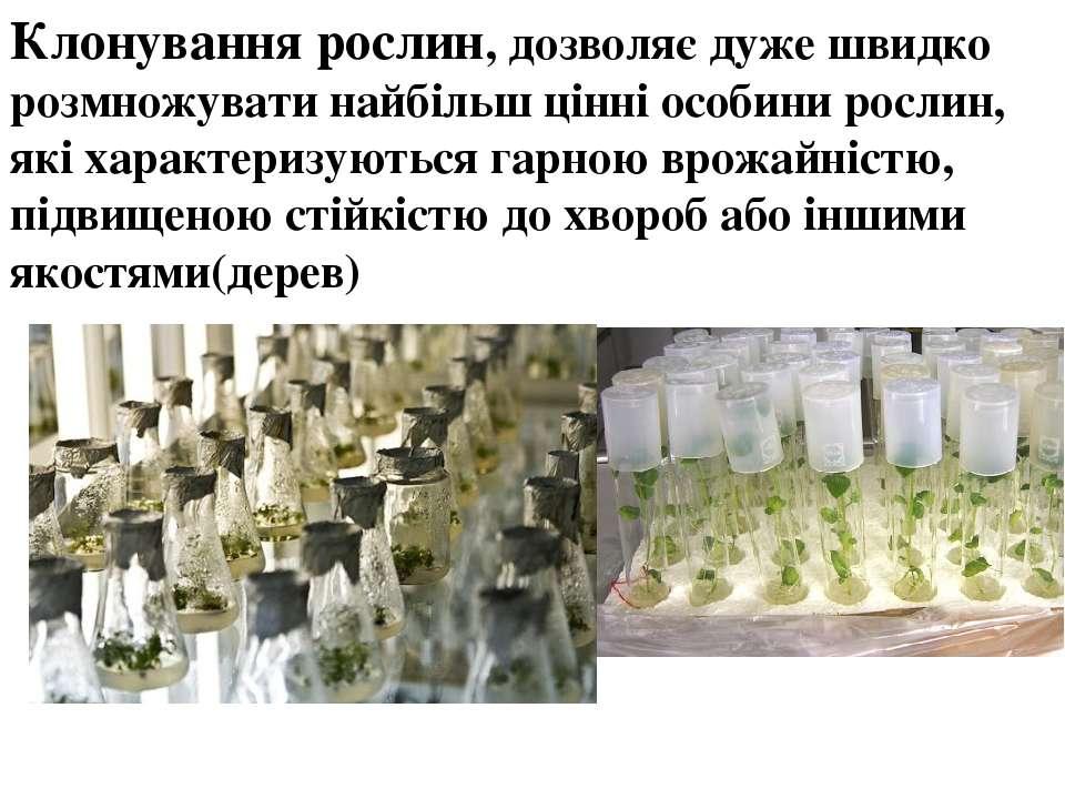 Клонування рослин, дозволяє дуже швидко розмножувати найбільш цінні особини р...
