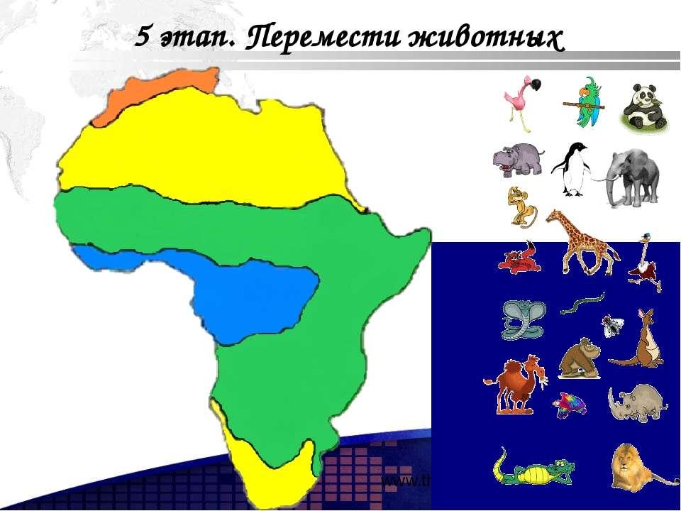 www.themegallery.com 5 этап. Перемести животных Add your company slogan LOGO