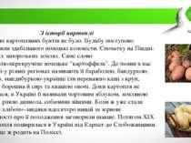 З історії картоплі В Україні картопляних бунтів не було. Бульбу поступово впр...