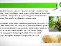 В інтегрованій системі захисту рослин поряд з хімічними вже дав но застосовую...