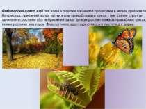 Фізіологічні адаптації пов'язані з різними хімічними процесами в живих органі...