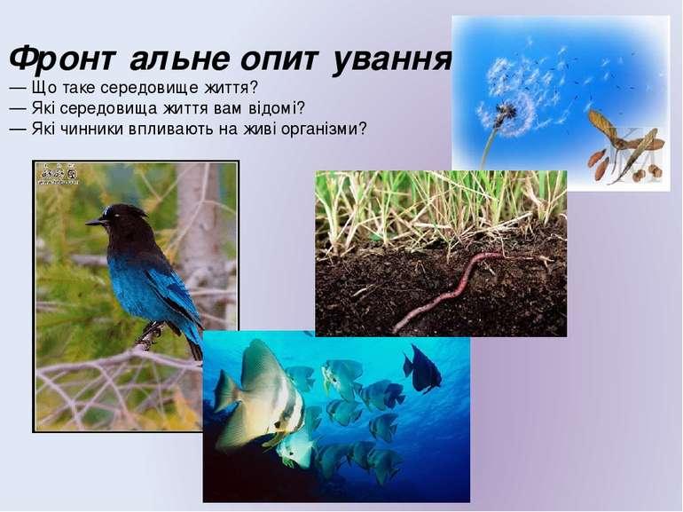 Фронтальне опитування — Що таке середовище життя? — Які середовища життя вам ...
