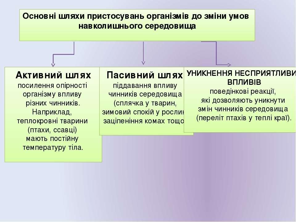 Основні шляхи пристосувань організмів до зміни умов навколишнього середовища ...