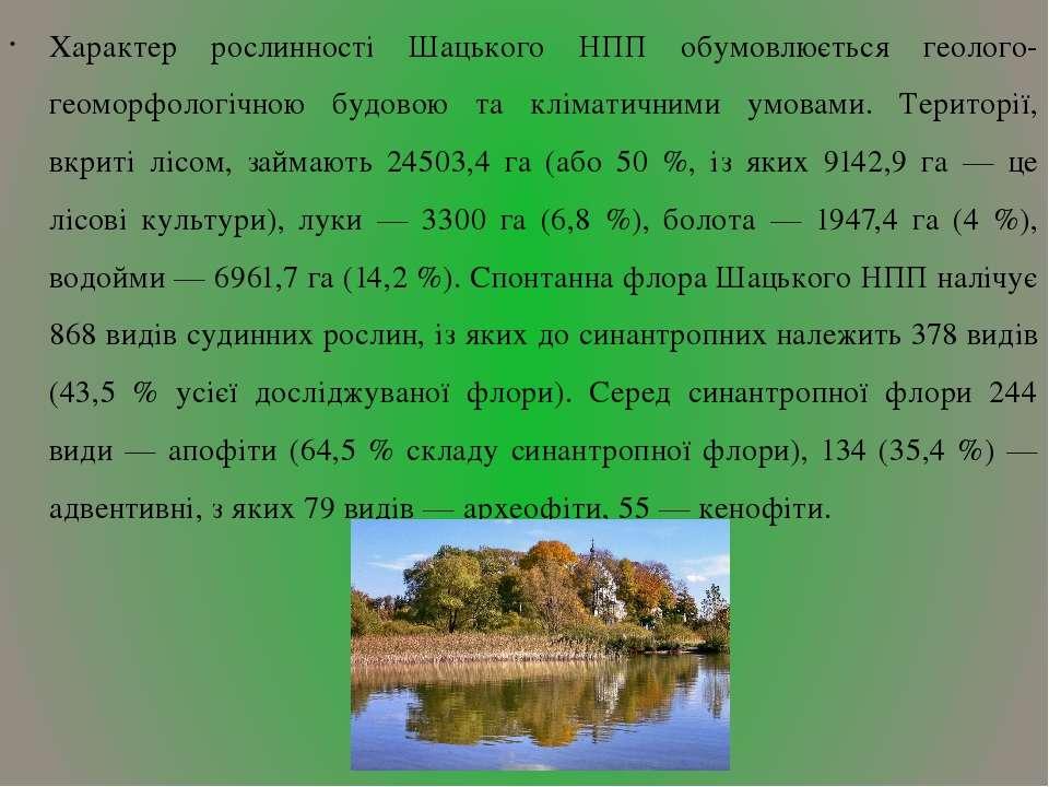 Характер рослинності Шацького НПП обумовлюється геолого-геоморфологічною будо...
