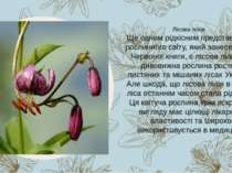 Ще одним рідкісним представником рослинного світу, який занесений до Червоної...