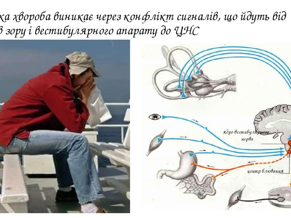 Морська хвороба виникає через конфлікт сигналів, що йдуть від органів зору і ...