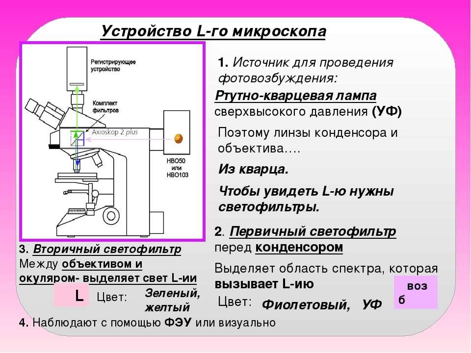 Устройство L-го микроскопа 1. Источник для проведения фотовозбуждения: Ртутно...