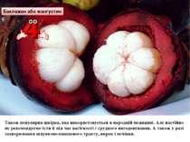 Баклажан або мангустин Також популярна шкірка, яка використовується в народні...