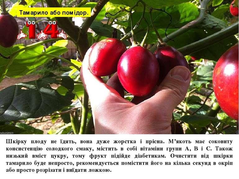 Тамарило або помідор. Шкірку плоду не їдять, вона дуже жорстка і прісна. М'як...