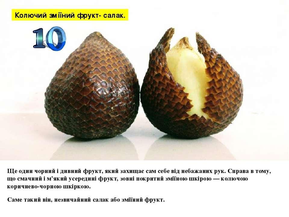 Ще один чорний і дивний фрукт, який захищає сам себе від небажаних рук. Справ...