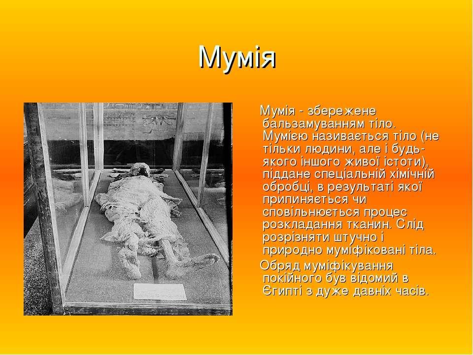 Мумія Мумія - збережене бальзамуванням тіло. Мумією називається тіло (не тіль...