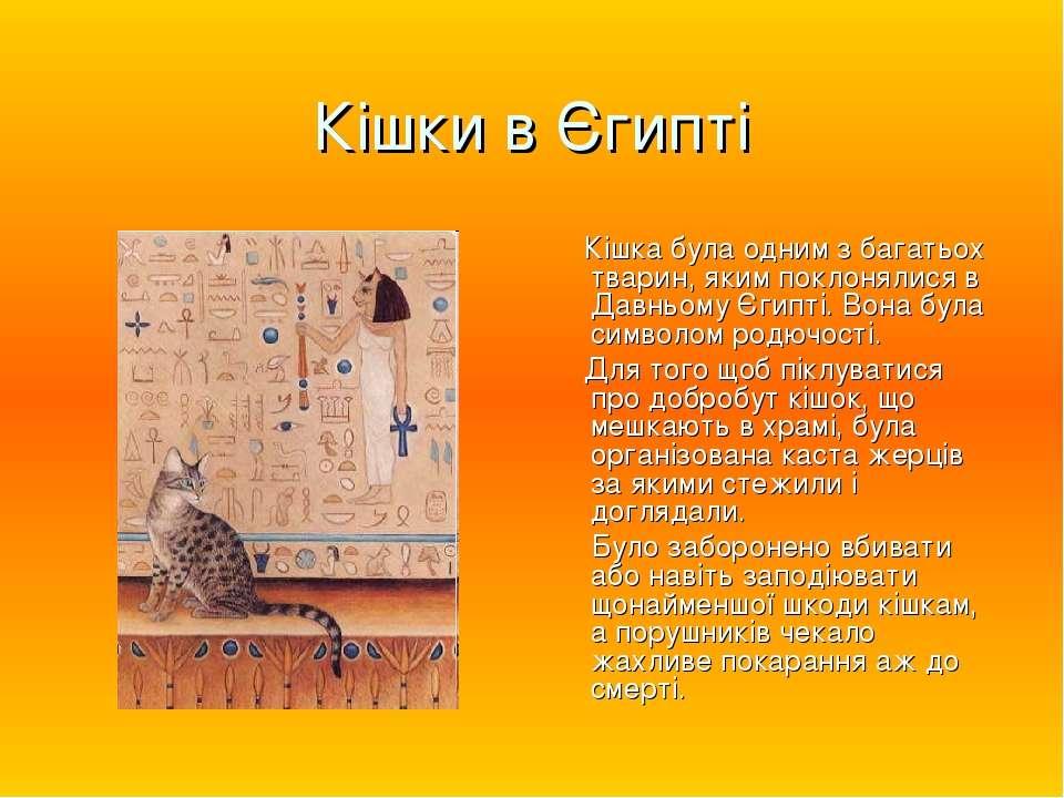 Кішки в Єгипті Кішка була одним з багатьох тварин, яким поклонялися в Давньом...