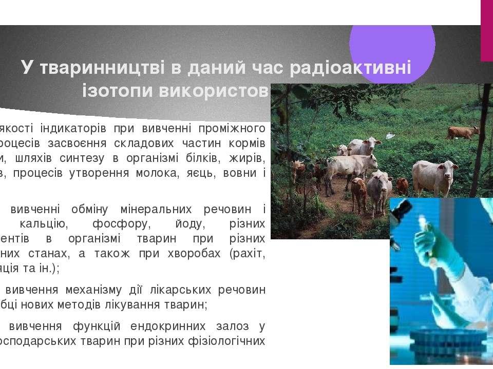 У тваринництві в даний час радіоактивні ізотопи використовуються: 1) в якості...