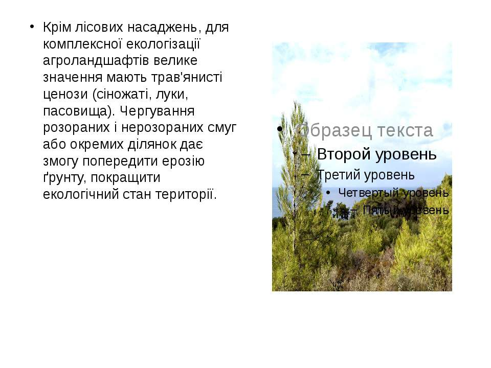 Крім лісових насаджень, для комплексної екологізації агроландшафтів велике зн...