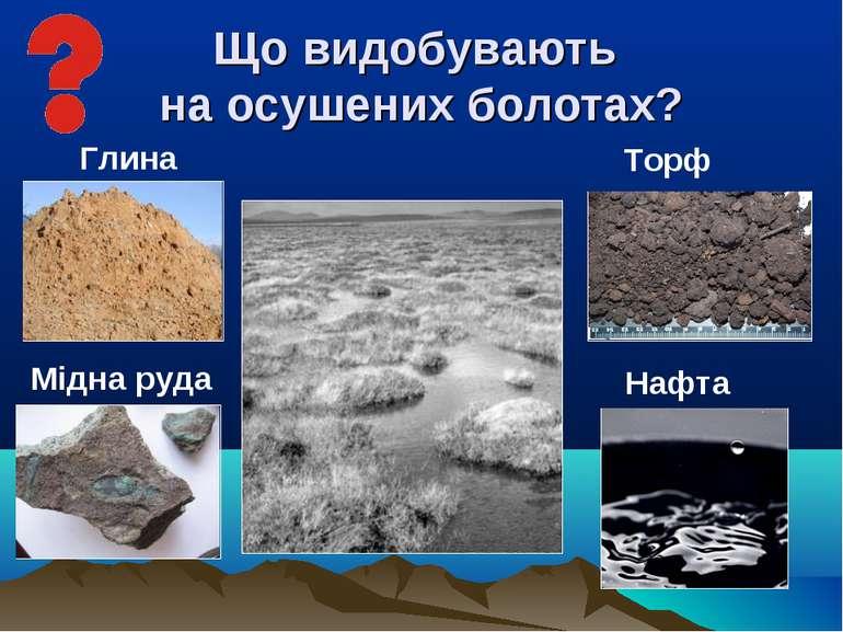 Що видобувають на осушених болотах? Торф Нафта Глина Мідна руда