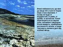 Вчені побоюються, що вже до кінця ХХІ століття Чорне море стане мертвим. У нь...