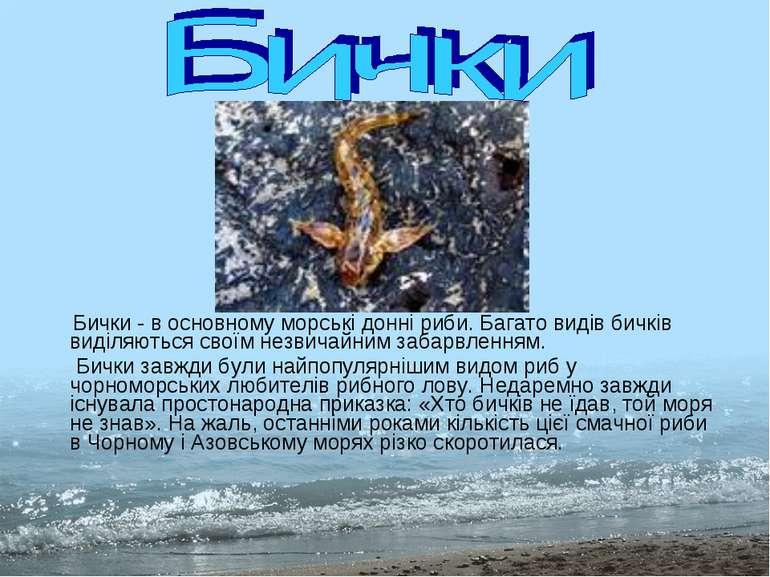Бички - в основному морські донні риби. Багато видів бичків виділяються своїм...