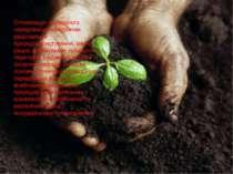 Оптимізація природного середовища передбачає раціональне природокористування,...
