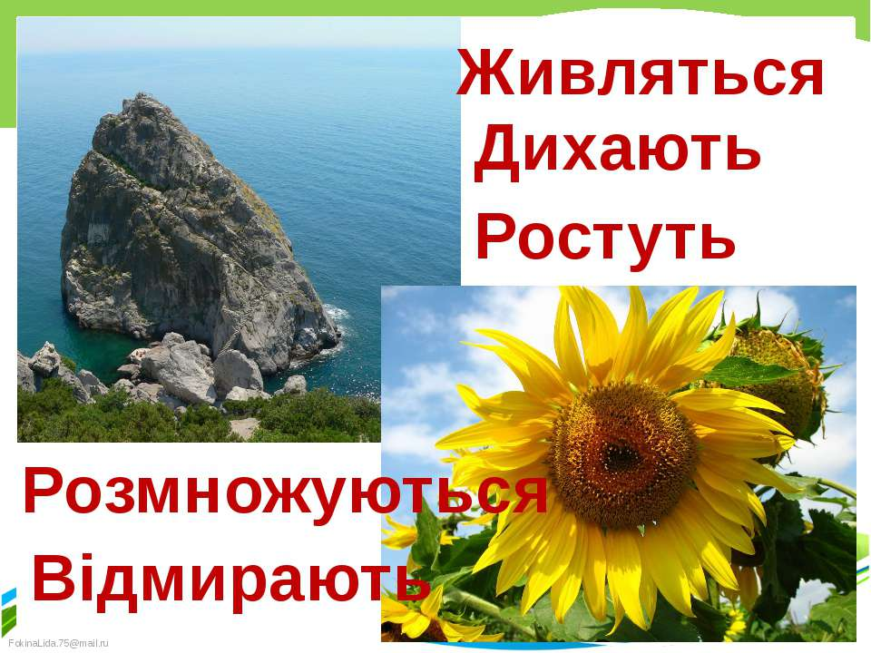 Живляться Дихають Ростуть Розмножуються Відмирають Кресак Наталя Миколаївна F...