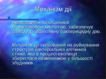 Механізм дії Амоксицилін, захищенний клавулановою кислотою, забезпечує швидку...