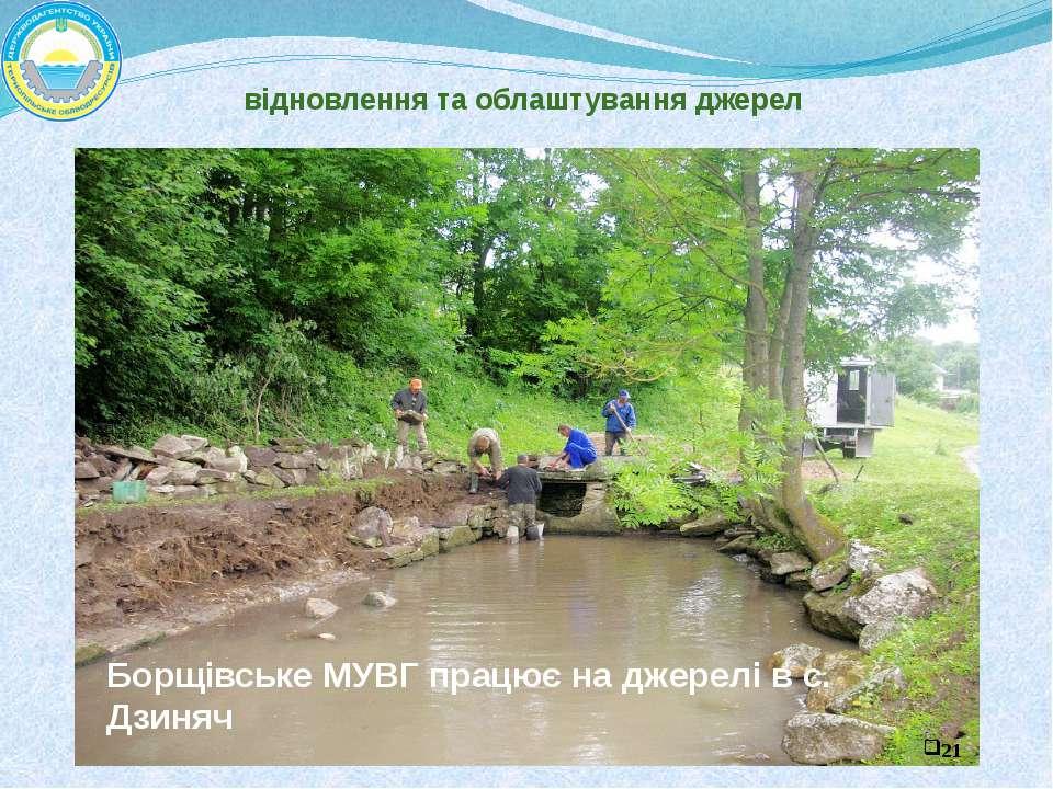 Витік р. Збруч відновлення та облаштування джерел Борщівське МУВГ працює на д...