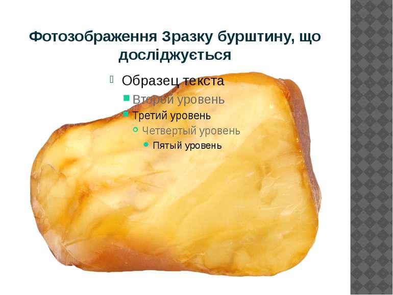 Фотозображення Зразку бурштину, що досліджується