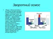Зворотний осмос Якщо з боку розчину з більшою концентрацією солей створити пе...