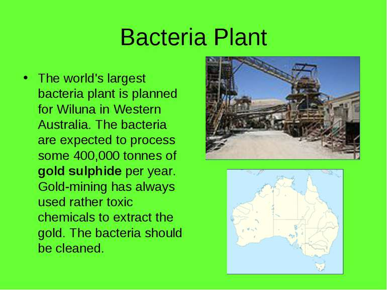 Bacteria Plant The world's largest bacteria plant is planned for Wiluna in We...