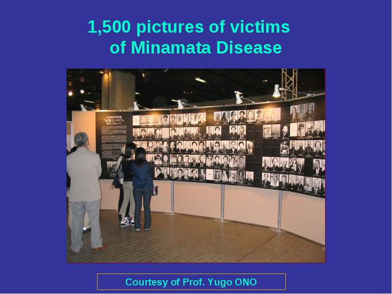 1,500 pictures of victims of Minamata Disease Courtesy of Prof. Yugo ONO
